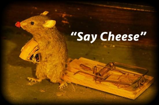 muis met rand